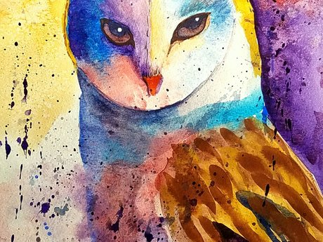 Original watercolor owl