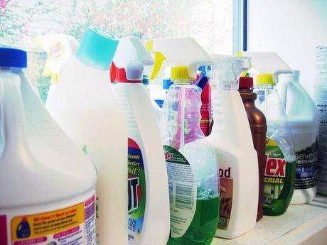 Clean your house! Colfax Pullman WA