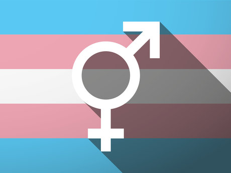 Transgender Education