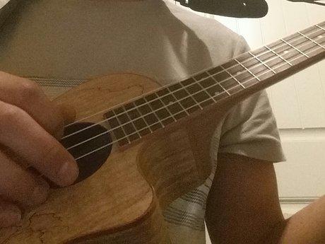 Ukulele lessons (beginner)