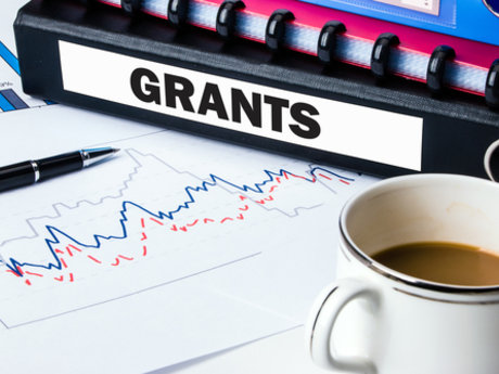 Grant Proposal Review and Edits