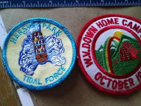 Summer scout patches