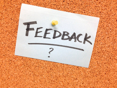 Website Review/Feedback