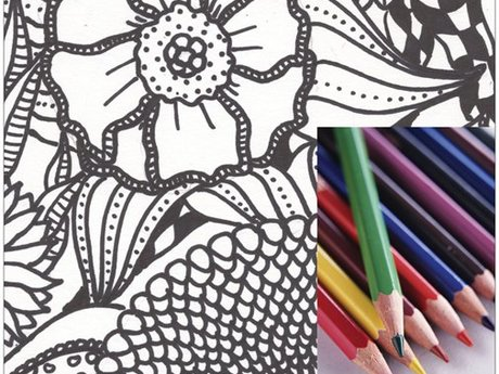 Field Flower Coloring Page Download