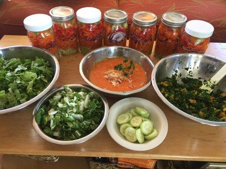 Vegetarian/vegan/plant-based diet