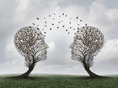 Relationship advice/guidance